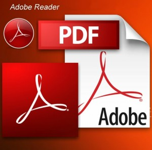 adobe reader version 10
