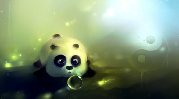 cute panda wallpaprs